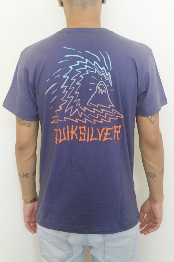 Camiseta Quiksilver Faded Out - 2 2